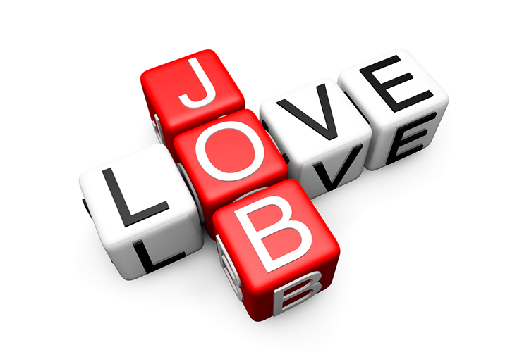 love-job-search