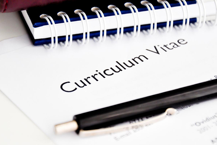 CV Resume Writing Education category for a CV  Educational institutions or specialized training programs
